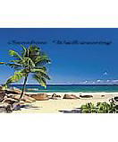 Sea Shore 1-006 tropical  wall murals