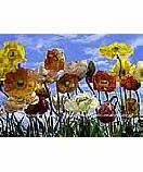 Poppy 8-257 wallpaper wall mural