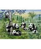 Pandas PR1010 Children's Wall Murals
