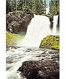 Woodland Falls 1465 Waterfall Wall Murals