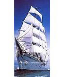 Sailing Ship 2-1017 Children's Wall Murals