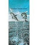 Dolphins 2 2-1203 Kid's Wall Murals