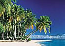 Tropical Beach 3905 Large Ocean wallpaper murals