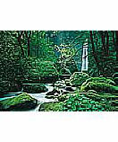 Ellowa Falls, Oregon wallpaper wall mural