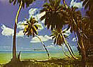 Tahiti 4036 Large Ocean wallpaper murals