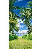 Beach Path 502 Ocean Wall Murals