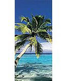 Lazy Palm 5115 tropical beach wall murals