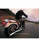 Harley Open Road wall mural