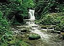Waterfall, Black Forest  Wall Murals