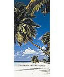 Bali Hi PR1205 palm tree wall mural