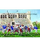 Football Stadium wall mural