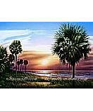 Palmetto Sunrise  wall murals