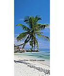 Palm Shore PR1202 tropical beach wall murals
