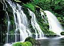 Royale Falls PR1830 Waterfall Wall Murals