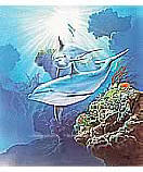 Dolphins 252-72023 Kid's Wall Murals