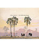 Elephant Walk Kid's Wall Murals