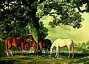 Green Pastures york wallpaper wall mural